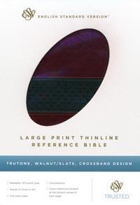 ESV Large Print Thinline Reference Walnut/Slate