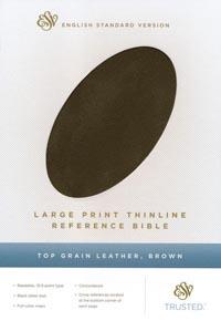 ESV Large Print Thinline Reference Brown