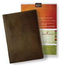 KJV Standard Full Color Bible