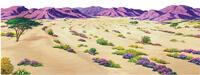 Desert Overlay - #4206 - large