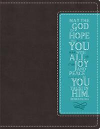 NIV, Beautiful Word Bible
