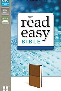 NIV Read Easy Bible