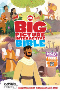 NKJV Big Picture Interactive Bible HC