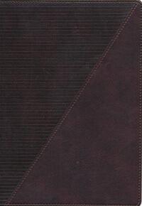 NKJV Study Bible Full Color  INDEXED