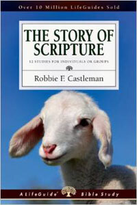 Story of Scripture, The (LifeGuide Bible Study)