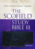 NIV Scofield Study Bible III * O/P