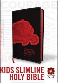 NLT Kids Slimline Bible