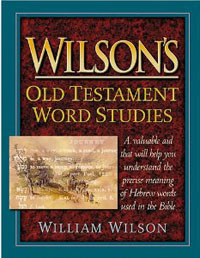 Wilsons Old Testament Word Studies*
