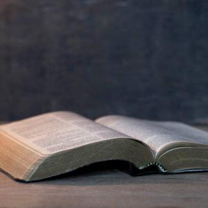 Newberry Bibles